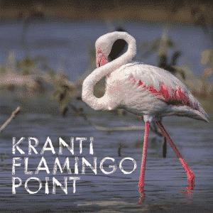kranti flamingo point